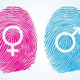 Gendering Homophobic Hate Crime: Reporting, Responses and Research